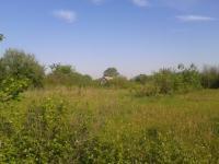 Земельный участок 6 соток в д.Игумново Талдомского района