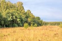 10 км от Пущино