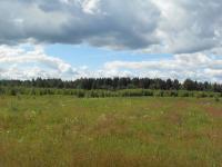 Участок земли сельхозназначения 8,3388 Га в районе дер. Боково Калязинского района Тверской области