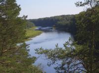Участок 17 соток в красивом месте на Верхней Волге. Река, лес, электричество, газ