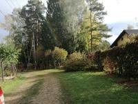 Участки у соснового леса д. Бекетово