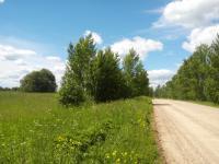 Шушково Участок 30 соток ИЖС, лес, инфраструктура, электричество, дорога, железнодорожная станция
