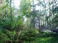 Лесной участок 20 соток в Валентиновке на Ярославском шоссе в 12 км. от МКАД